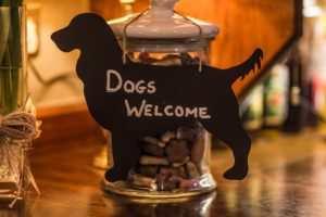 Yorkshire Bridge Inn Dogs