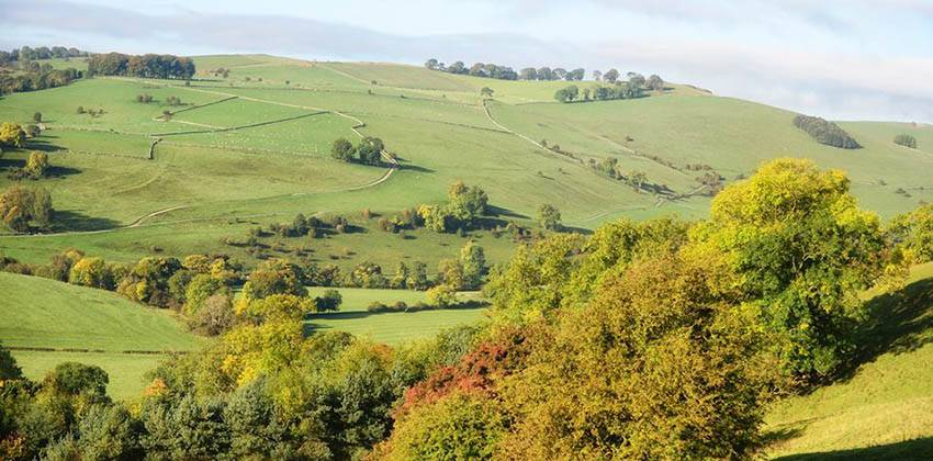 Woolley Moor