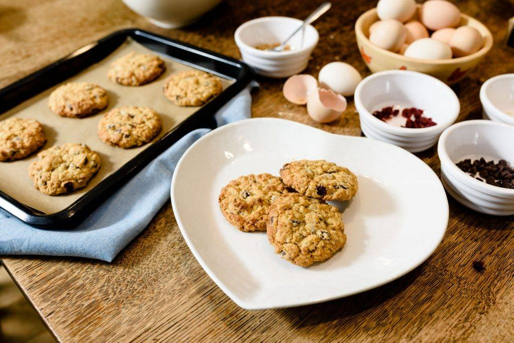 National Biscuit Day at Hoe Grange Holidays