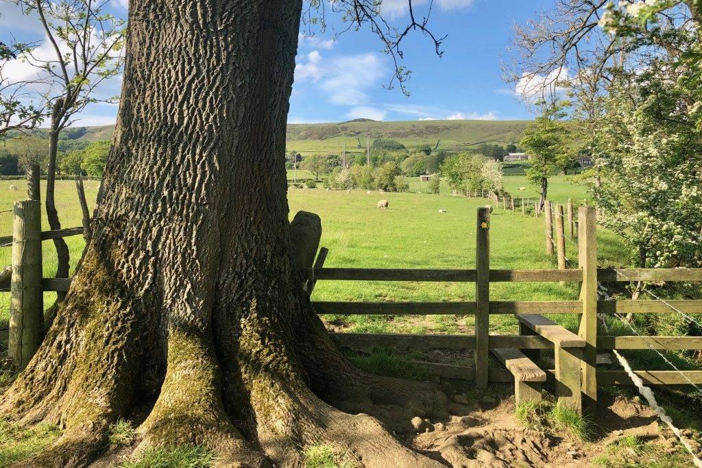 Hope Valley Walks
