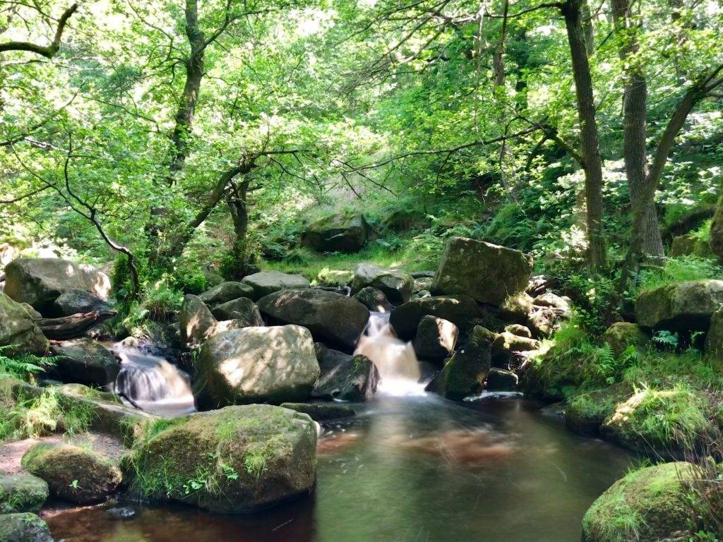 10 Best Days Out in the Peak District : Padley Gorge
