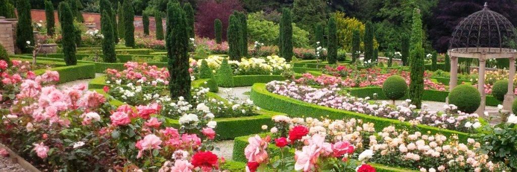 Hopton Hall Rose Gardens